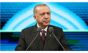 Erdoğan, Türkiye'yi belgesellerdeki aslanlara benzetti: Lime lime ederler