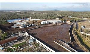 Doğuş Pirina Fabrikası hakkında açıklama: 'Gerekirse mühür, gerekirse yıkım'