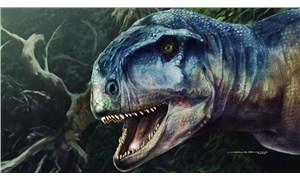Arjantin'de T-Rex'e benzeyen yeni bir dinozor türü keşfedildi: 'Korkuya neden olan'