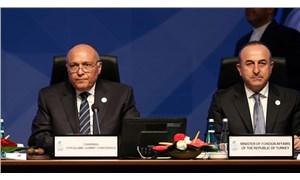 Çavuşoğlu, Mısır Dışişleri Bakanı Şukri ile görüştü