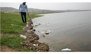 Katledilen Hasankeyf'te balık ölümleri yine başladı: Bölge halı tedirgin!