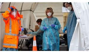 Bilim insanlarından DSÖ'ye çağrı: Koronavirüsün hayvansal kökenleri araştırılsın