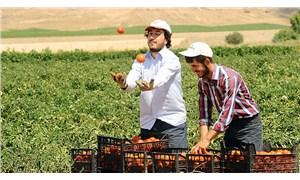 Küçük çiftçiler işçileşiyor