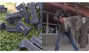 Çiftçi hasadını esnaf çay ocağını sokağa attı: Geçinemiyoruz isyanı artıyor