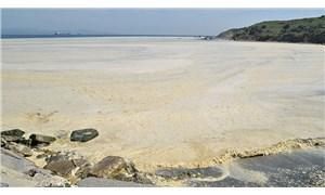 Marmara Denizi 'salya' nedeniyle alarm veriyor: Dayanma gücü kalmadı
