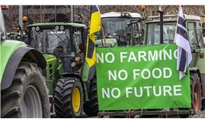 Büyük gıda şirketleri mi, küçük üreticiler mi: Çiftçi kimdir?