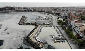 Müsilaj felakete doğru yol alıyor: Marmara, Karadeniz ve Kuzey Ege tehlikede