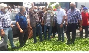 Fındıklılı çay üreticilerinden kota eylemi: Çayları yola döktüler