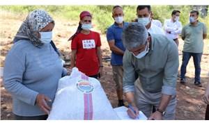 Marmaris Belediyesi, çiftçilere tohum dağıttı: Ata toprakları satılmasın