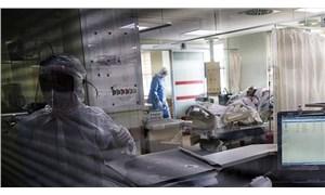 5 bin hasta incelendi: Koronavirüs erkeklerde unutkanlık, kadınlarda saç dökülmesi yaptı