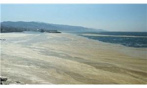 AKP'den deniz salyasına karşı 12 maddelik eylem planı önerisi