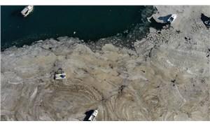 Deniz salyası, Fenerbahçe Sahili'ni kapladı