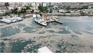Marmara Denizi'nde çözünmüş oksijen bitmek üzere