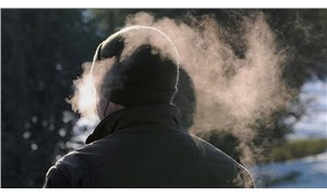 Dünya Meteoroloji Örgütü: Avrupa, 2013'ten bu yana en soğuk baharı yaşadı