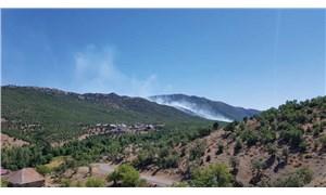 Görese Dağı'ndaki orman yangını 5'inci günde de sürüyor