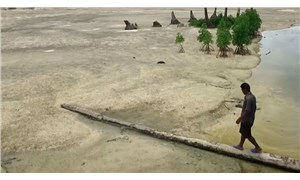 Emperyalist ülkelerin 100 yıl boyunca sömürdüğü Banaba Adası'nda içme suyu kalmadı