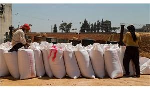 Savaştaki Suriye'den 209 bin ton hububat