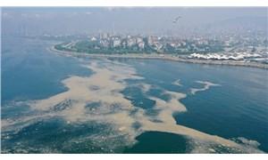 Müsilaja karşı pilot çalışma: Marmara Denizi'nde 30 metre derinliğe oksijen verilecek