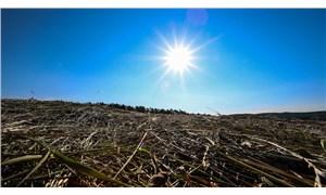 BM İklim Raporu: Önümüzdeki 30 yıl felaketlere gebe