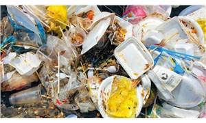 Avrupa'da plastik tabak, çatal, kaşık kullanımı 3 Temmuz'da sona eriyor