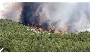 Bakan Pakdemirli, Kaş'taki orman yangınının kontrol altına alındığını açıkladı