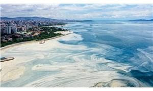 Bakan Kurum: Pendik'te oksijen oranı arttı ama Körfez kötü
