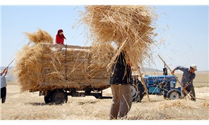 Kuraklık, ot ve saman fiyatını vurdu