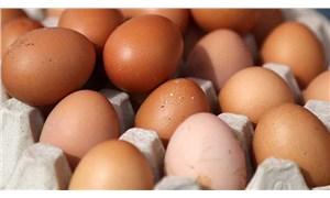 Sonunda yumurta kapıya dayandı
