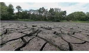 Bakan Pakdemirli'nin açıkladığı kuraklık ödemesine çiftçiden tepki: Sadece 5 köyün hasarını karşılar!