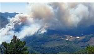 Akdeniz ormanları yanıyor: Bazı bölgelerde evler boşaltılabilir