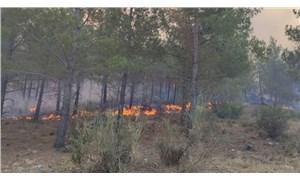 Mersin'de orman yangını: Ekipler bölgede