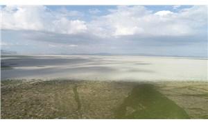 En büyük beşinci göl sazlığa döndü