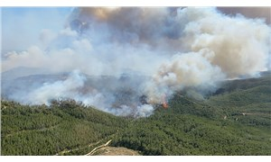 Wildfire at four different points in Manavgat