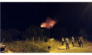 Bir orman yangını da Soma'da