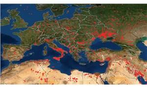 NASA'nın yangın haritasında son durum