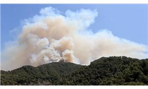 Orman Genel Müdürlüğü: 79 yangından 66'sı kontrol altına alındı
