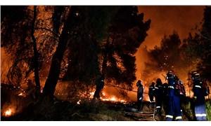 Orman yangını ekolojik felaket