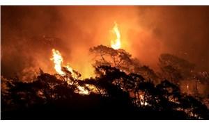 Orman yangınlarında son durum: 7 yerde yangınlar sürüyor, 8 yurttaş yaşamını yitirdi