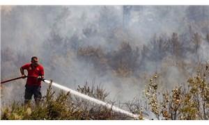 Tarım ve Orman Bakanı Pakdemirli: Gazipaşa, Silifke ve Bodrum yangınları kontrol altına alındı