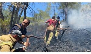 İBB, yangın bölgelerine itfaiyenin ardından veteriner hekimleri de gönderdi