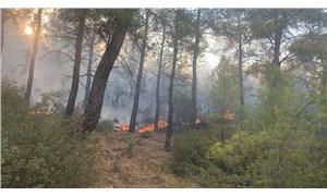 Seydikemer'de yangın yeniden başladı