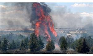 Atatürk Orman Çiftliği'ndeki yangınla ilgili iddianame: 1 kişi hakkında 10 yıl hapis istemi