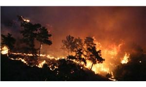 OGM, yangınlarla ilgili son durumu paylaştı: Müdahale sürüyor