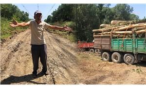 Sakarya'da ağaç kıyımına köylüler engel oldu: Ormanlar yanıyor, bunlar geliyor kesim yapıyor