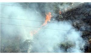 Beykoz'da orman yangını: 300 metrekare alan yandı