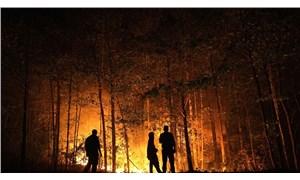 Rus çevre bilimci Laletin: Yangın yayılmadan söndürmek her zaman çok önemli