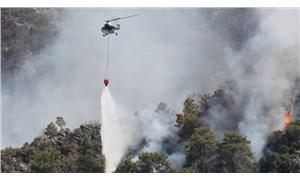 Türkiye ile benzer iklim özelliklerine sahip ülkelerde orman yangınları nasıl söndürülüyor?