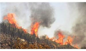 Bodrum Mumcular'daki yangınla ilgili 3 kişi tutuklandı