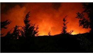 Muğla'daki yangınlara ilişkin 6 kişi tutuklandı