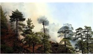 80 hektar alanın yandığı Aladağlar'da 24 saat nöbet